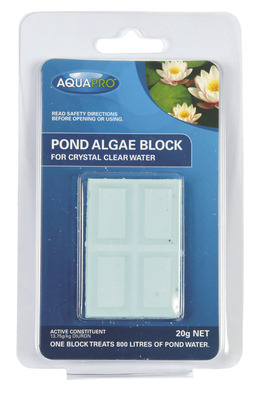 AQUAPRO Pond Algae Block 20g NET