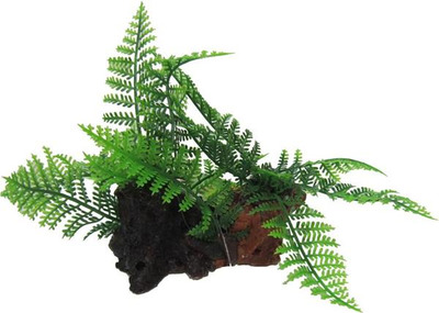 Aqua Dekore Exotic Plant Replica Twin Ferns on Log