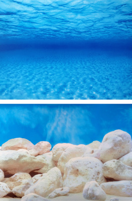 Aquarium Background Double Sided 60cm high - Seaview/White Stone