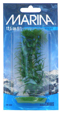 Marina Aquascaper Anacharis Aquarium Plant Small