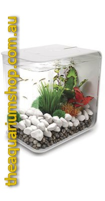 biorb flow 30 aquarium white the aquarium shop australia. Black Bedroom Furniture Sets. Home Design Ideas