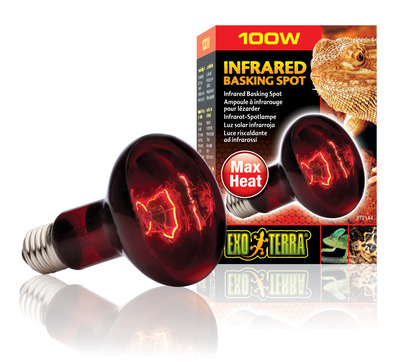 Exo Terra Heat Glo Infrared Heat Lamp R25 100watt