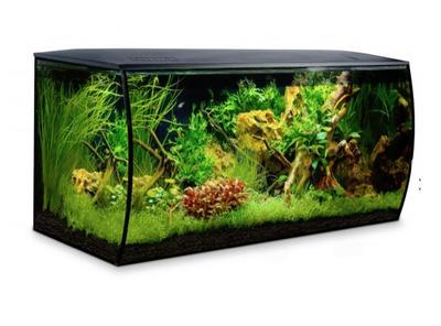 Fluval Flex 123 Litre Black Aquarium The Aquarium Shop Australia