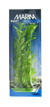 Marina Aquascaper Hygrophila Aquarium Plant Large