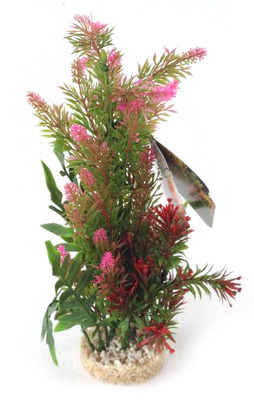 Sydeco Colour Aquarium Plant Display Large - 26cm