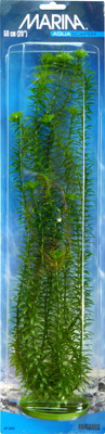 Marina Aquascaper Anacharis Aquarium Plant Medium