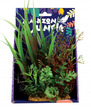 Amazon Jungle Mixed Variety Display 20cm