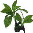Aqua Dekore Exotic Plant Replica Giant Lemon Tree