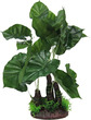Aqua Dekore Giant Elephant Ear Plant Large