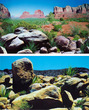 Aquarium Background Double Sided 50cm - Arizona Desert A and B
