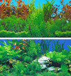 Aquarium Background Double Sided 30.5cm - Rocky Green and Lush Aquarium