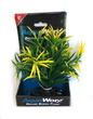 Deluxe Bunch Plant (6inch) Green bush yellow tip