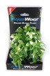 Deluxe Bunch Plant 6inch Green-white leafy bush