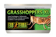 Exo Terra Canned Wild Male Grasshoppers XL 34g