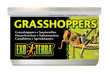 Exo Terra Canned Wild Male Grasshoppers 34g