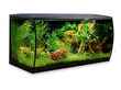 Fluval Flex 123 Litre Black Aquarium