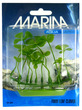 Marina Aquascaper Foreground Plant Aquarium Plant Four Leaf Clover