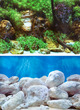 Marina Aquarium Background Double Sided 59.5cm - Aquatic Garden-Bright Stones