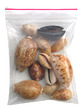 Shells Bag Mix 10 Types Cowries