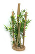 Sydeco Bamboo XLarge with Plants 38cm