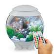 Buy Aquarium Supplies And Fish Tank Filters From The
