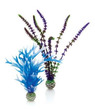 biOrb Plant Set Medium Blue and Purple